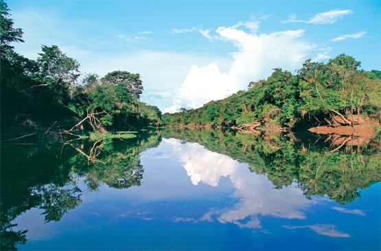Parque Nacional Pacaya Samiria