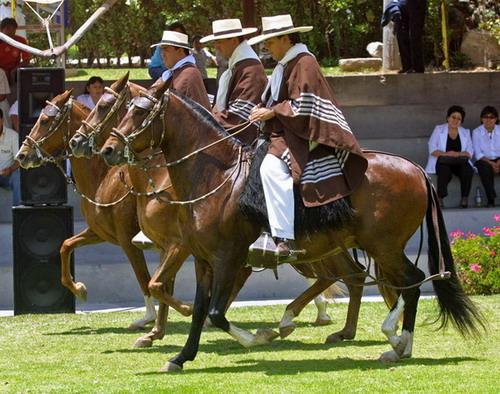 Lambayeque y los caballos