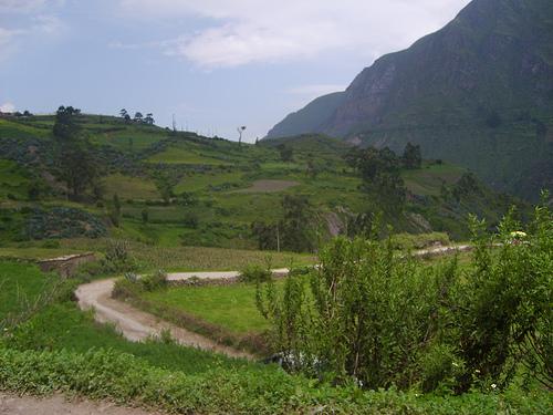 Canta en Perú