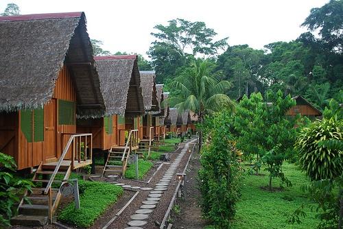 Alojamiento Amazonas