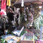 El Mercado de los Brujos en Chiclayo