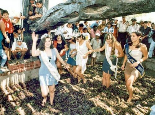 Festival de la Vendimia