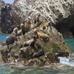 La Isla San Gallán frente a Paracas
