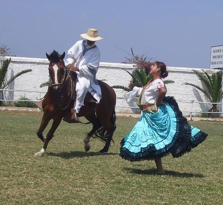 Festival de caballo peruano de paso