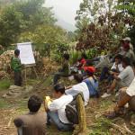Café orgánico, de la selva peruana al mundo