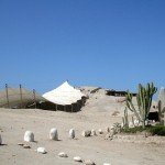 Huaca El Brujo, centro religioso Mochica
