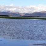 Visita a la Reserva Nacional Junín