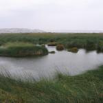 El Santuario de las Lagunas de Mejía