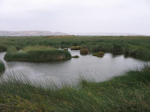 Lagunas de Mejia