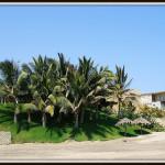El paraíso en las playas de Máncora