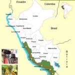 La Ruta del Pisco, desde Lima hasta Ica