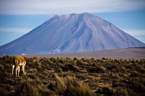 Volcan Misti en Arequipa